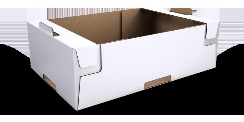 hộp giấy trái cây